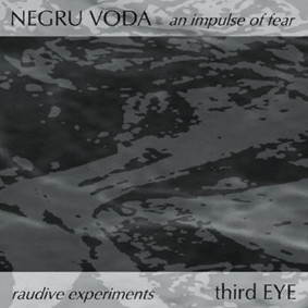 NEGRU VODA/third EYE: An Impulse of FearRaudive Experiments (CD)